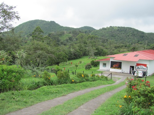 Janson Coffee Farm